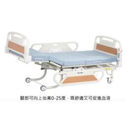 Oasis WDB-8B三功能電動護理床