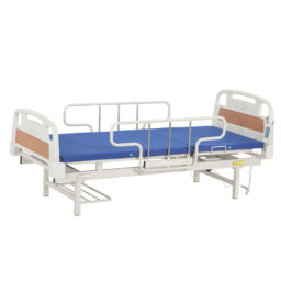 Oasis WDB-9A單功能電動護理床