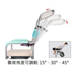 洗頭沖涼座便椅 WFZK-6759