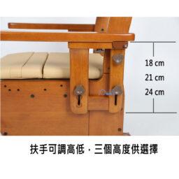 日本品牌Aron AR-750L座便椅