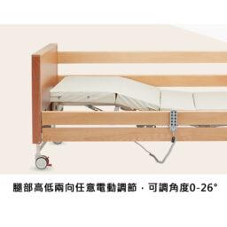 BD600六功能電動護理床